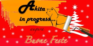 Akita in progress feste