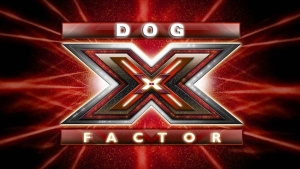 the-x-factor1 copia
