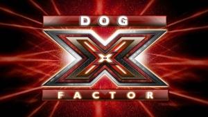the-x-factor1 copia